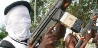 Failed Mission: Six Gunmen Killed, 11 Arrested In Attack On Uzodinma's Community