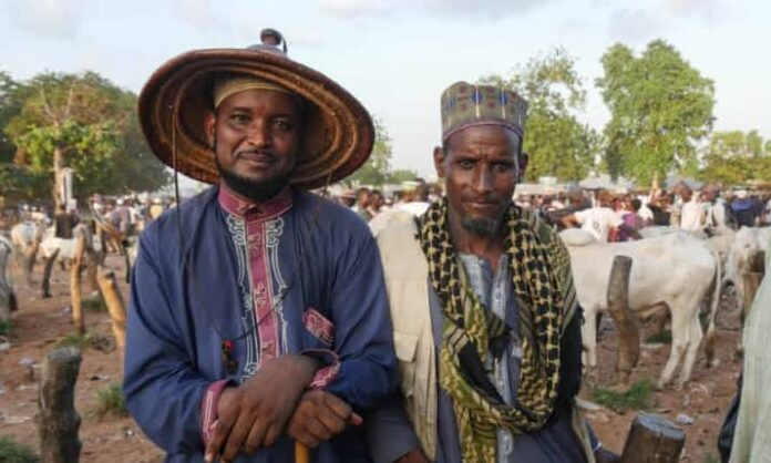 We Are Not Spared! Miyetti Allah Says Bandits Also Attack Fulani Herders