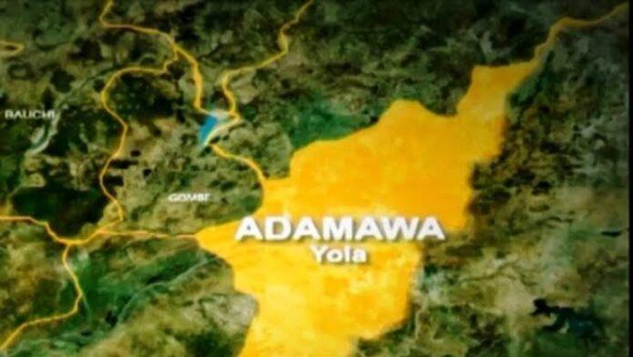 Killer-Debtor! Man Kills Wife In Adamawa For Demanding Payment of N1,000 Debt