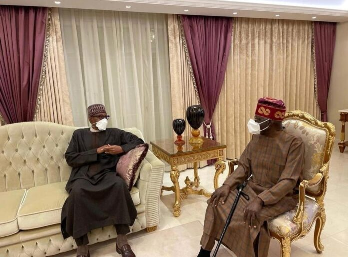 Buhari's Visit To Tinubu Not A Show Of Support For His Presidential Ambition - Femi Adesina