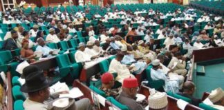 Reps Pass Bills Establishing South-East, South-West, North-West, North-Central Development Commission